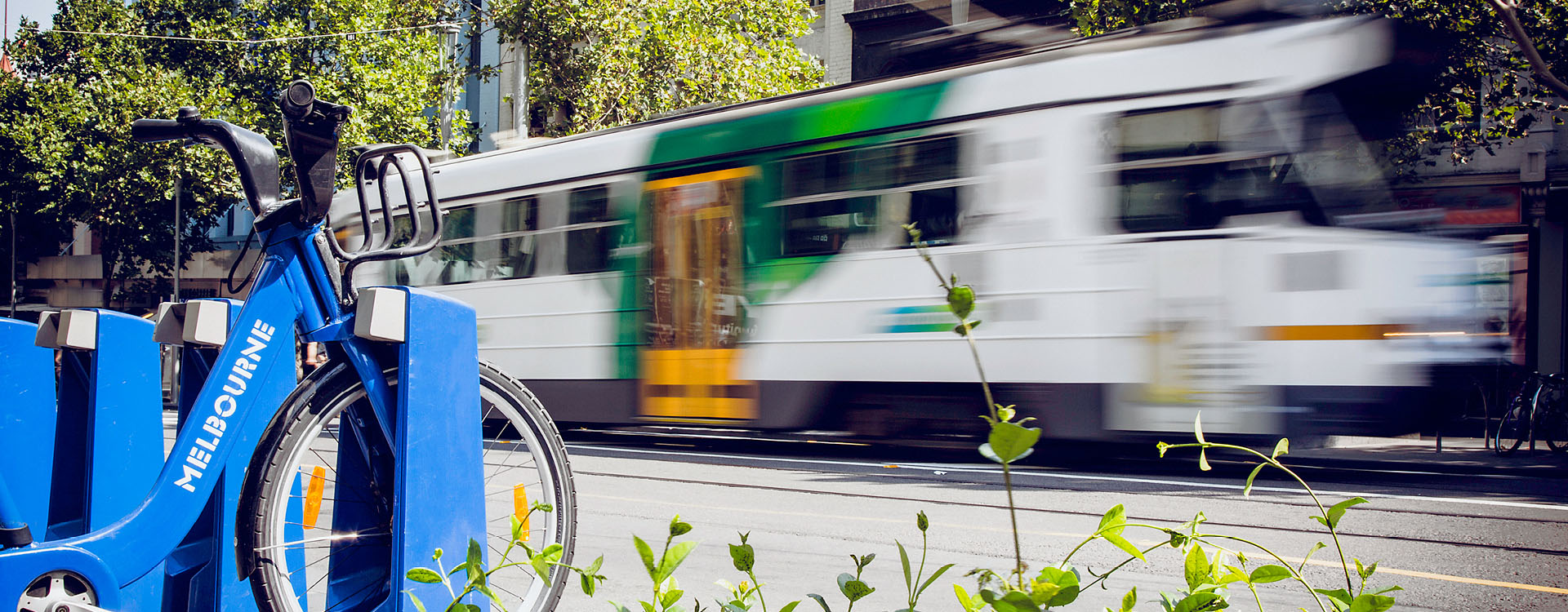 bnr-melbourne-tram-city-bicycle