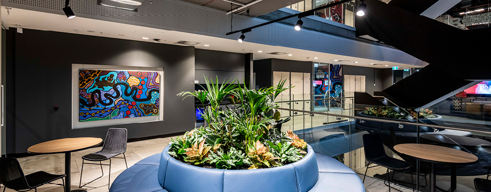 img-aboriginal-design-movement-brisbane-office