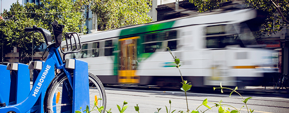 thn-melbourne-tram-city-bicycle