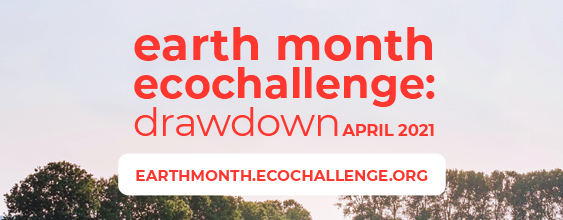 thn-wsp-earth-month-ecochallenge