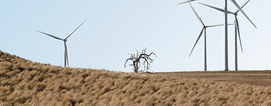 Wind turbines - Horsdale Wind Farm