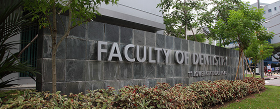 thn-sg faculty of dentistry