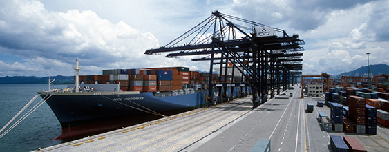 thn-yantian international container terminal