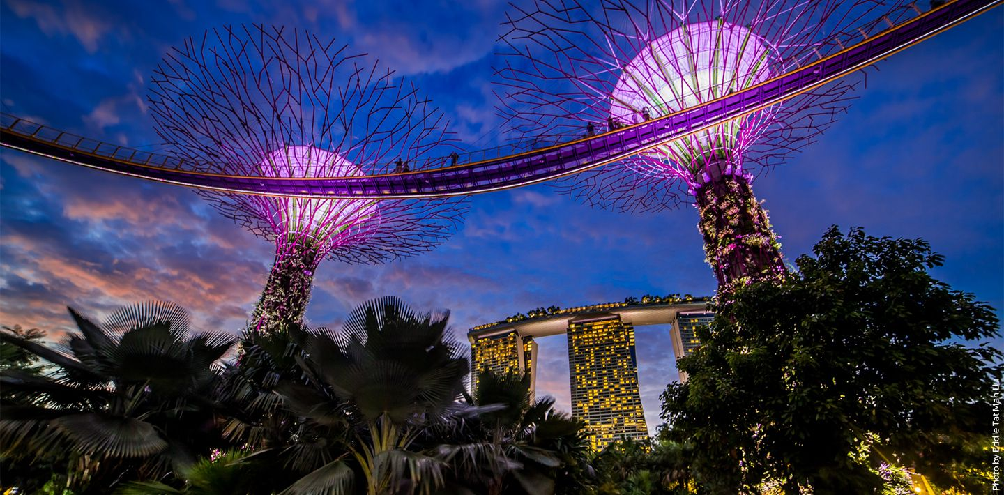 engineering-Marina-bay-sands-exterior-view-night