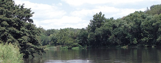 Secluded area of the Anacostia River