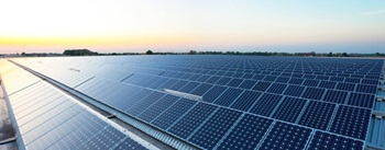 Solar panels in solar farm